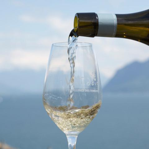 Vaud wines