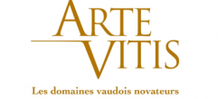 Arte vitis