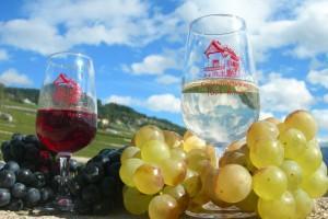 Siegenthaler Vins