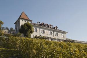 Ville de Lausanne - Domaine du Burignon