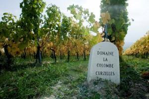 Domaine La Colombe