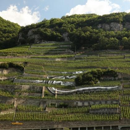 Badoux Vins