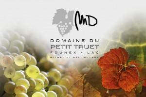 Domaine du Petit Truet