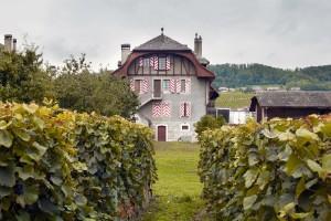 Ville de Lausanne - Abbaye de Mont